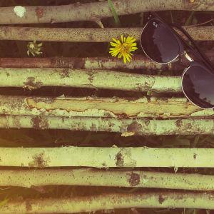 Sommar och solglasögon