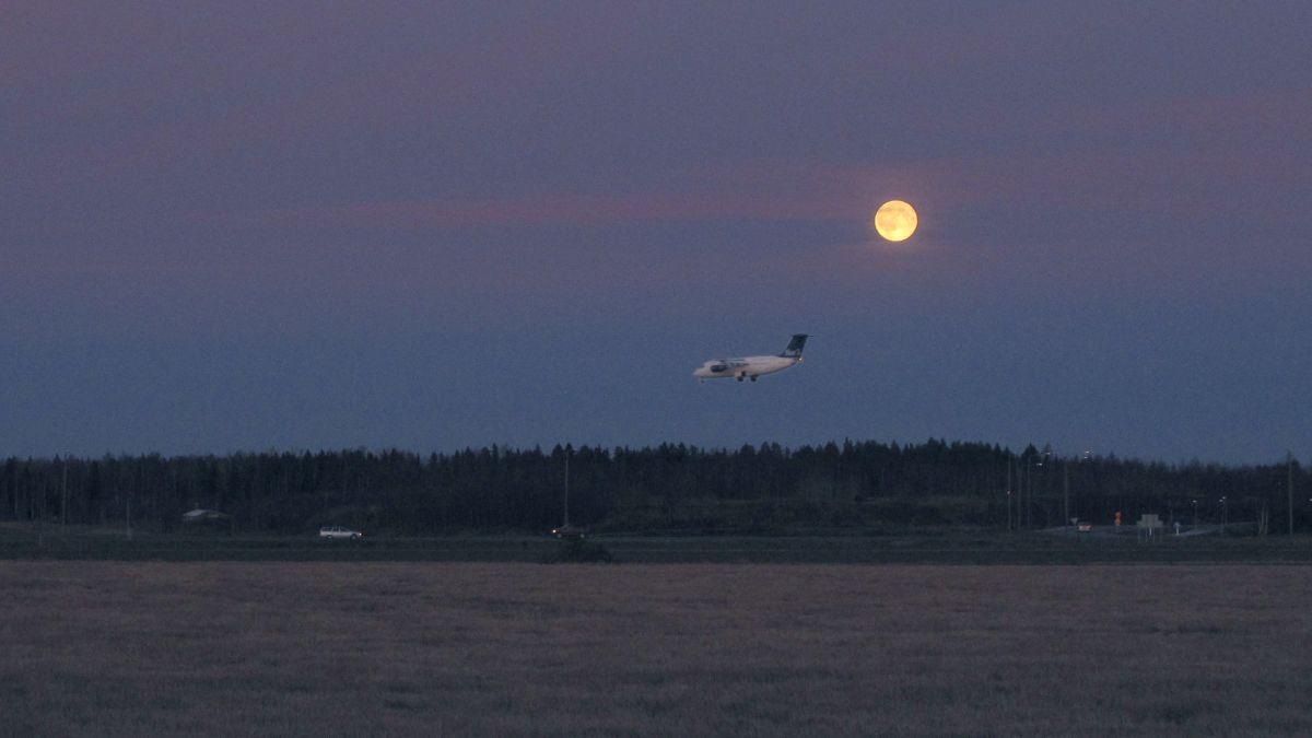 Blue1 blev SAS Finland | Österbotten | svenska.yle.fi