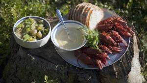 Kokta kräftor med majonnäs och bröd, dill och fånkålskokta potatisar