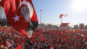 Människor i Istanbul som stöder regeringen protesterar mot kuppförsöket.