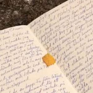 dagbok, 2003