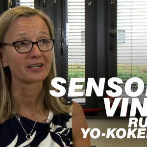 YTL:n sensori Taina Juurakko-Paavola