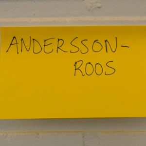 Dubbelnamnet Andersson-Roos.