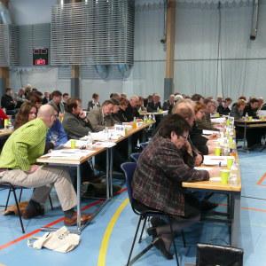 Lovisa stadsfullmäktige 2010