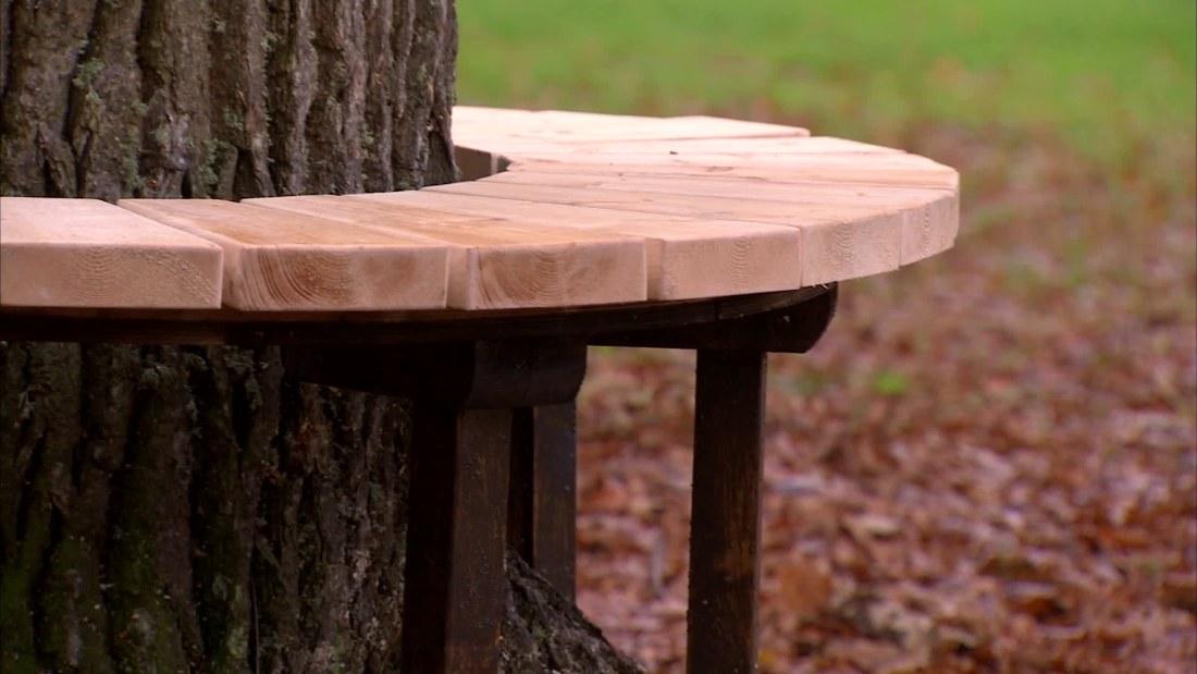 Bänk runt träd  Bygga och bo  svenskaylefi