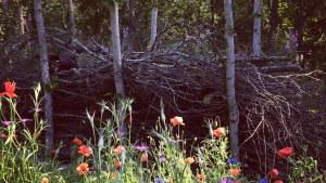 Blomäng framför ett staket byggt av riskor.