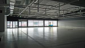 I den här affärslokalen får djursjukhuset 500 kvadratmeter till.