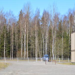 Skogsområde norr om Lappvik skola.