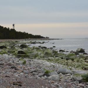 Stranden på Örö.
