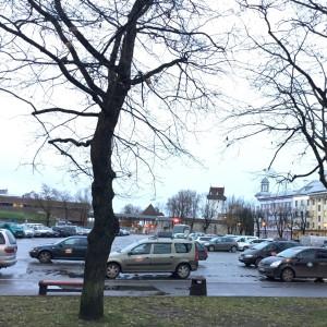 Narva, Petersplatsen. Gränsen i bakgrunden