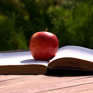 omena, kirja ja kesä