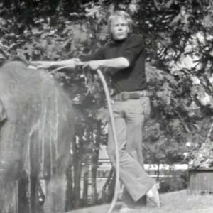 Lasse Mårtenson pesee norsua Linnanmäellä 1974