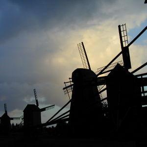 Tuulimyllyjä vastavalossa