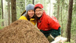 Minna Pyykkö ja Pirkka-Pekka Petelius tutustuvat muurahaisten valtakuntaan.