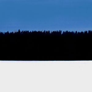 Virolainen maisema, inspiraationa viron lippu.
