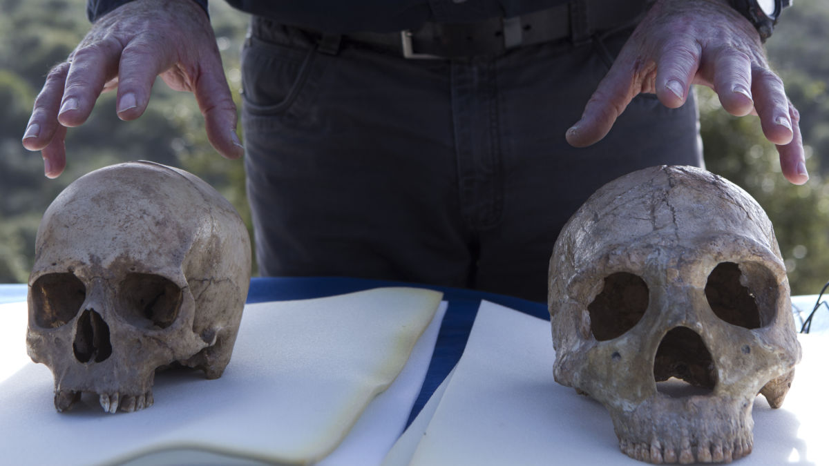 epa04591498 An unidentified scientist explains the differences between a modern human skull (L) and a Neanderthal skull (R) as he speaks outside the Manot stalactite cave in northern Israel, 28 January 2015 about the 55,000-year-old skull's discovery mark