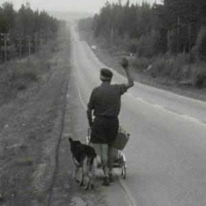 Arvo Saarinen koirineen protestimarssilla keskisuomalaiselle maantiellä 1967.