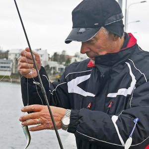 Fiskare tar loss strömming från kroken
