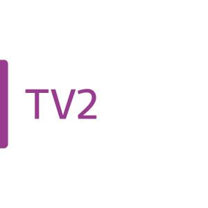 Yle Tv 2-logo.