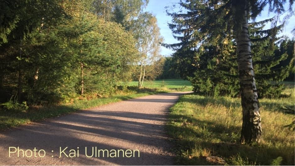 Sakari Kuosmanen - Onnen Lyhteet