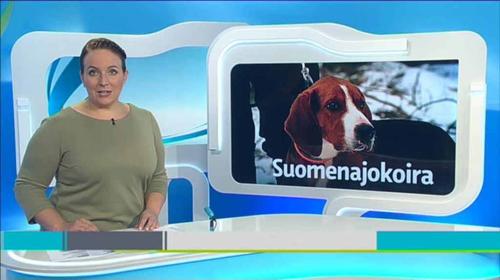 Yle Uutiset Kaakkois-Suomi