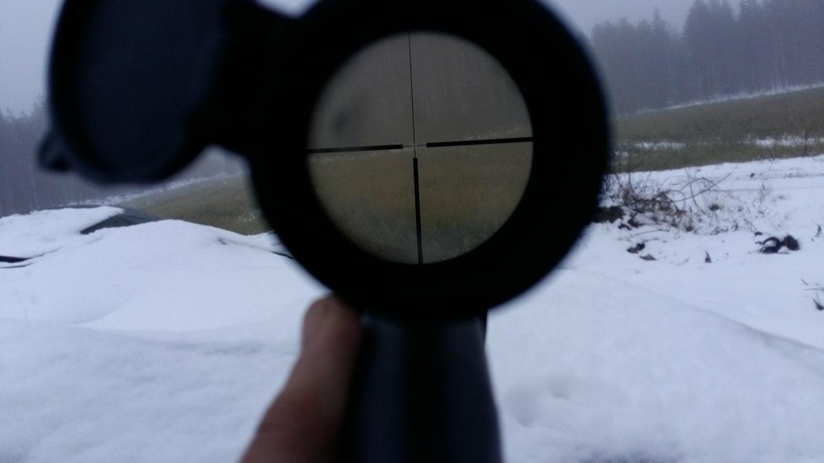 Metsästyksessä pyörii miljoonia – hyvinvointilisää vaikeampi mitata | Yle Uutiset | yle.fi