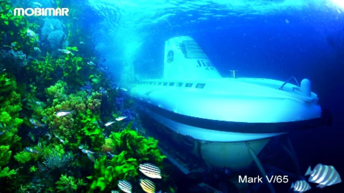 Mir Sukellusvene