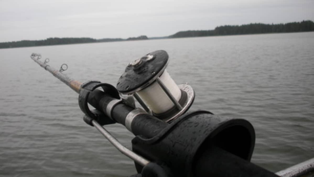 Kalastuksenvalvojan Oikeudet
