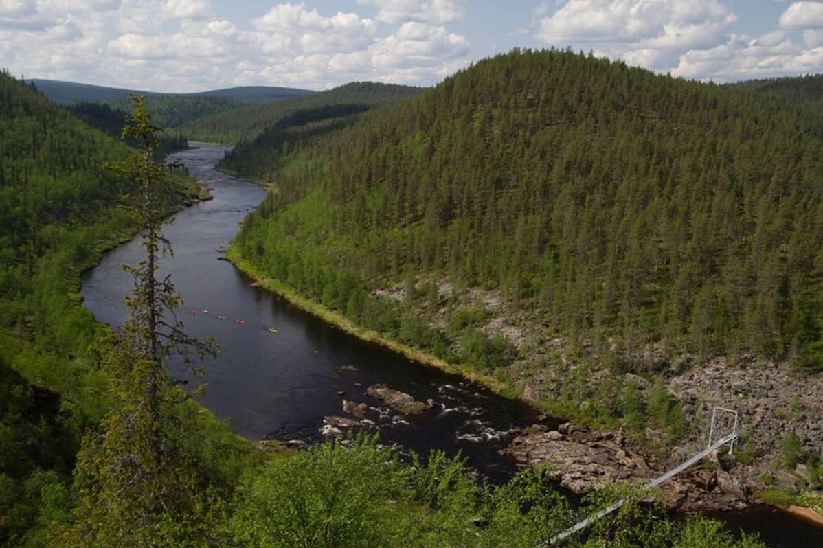 Metsähallitus Kalastusluvat