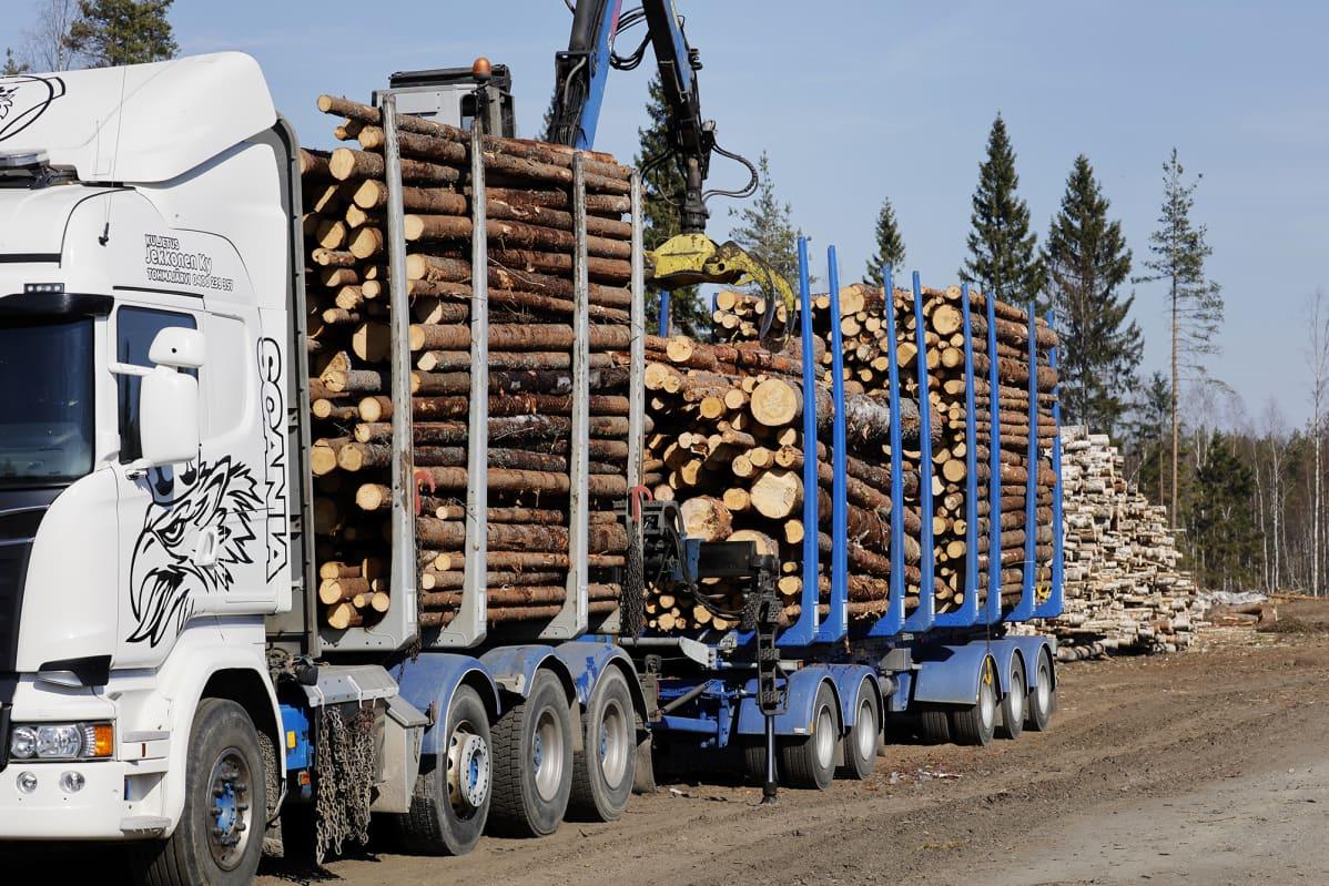 Metsäteollisuus Tes