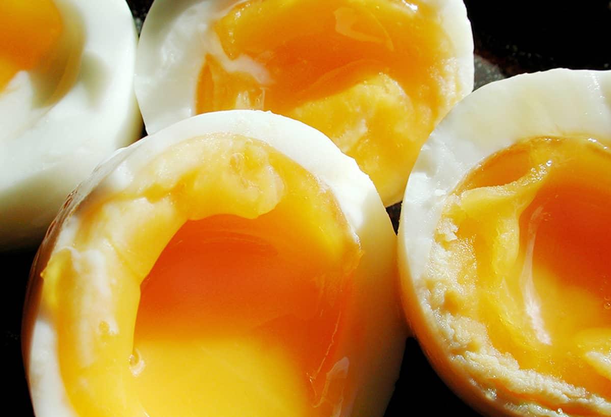 Kananmunan Kolesteroli