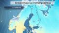 Video: Kylmä pohjoisvirtaus