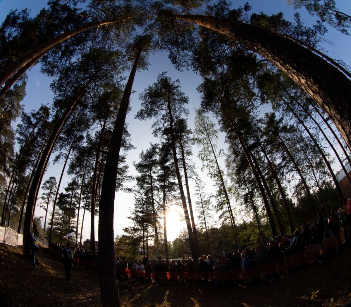 Ralliyleisöä metsässä Jyväskylän MM-rallissa.