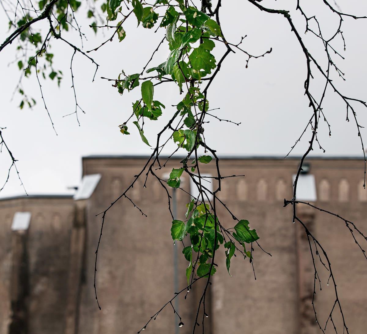 Riihimäen vankilan muuri.