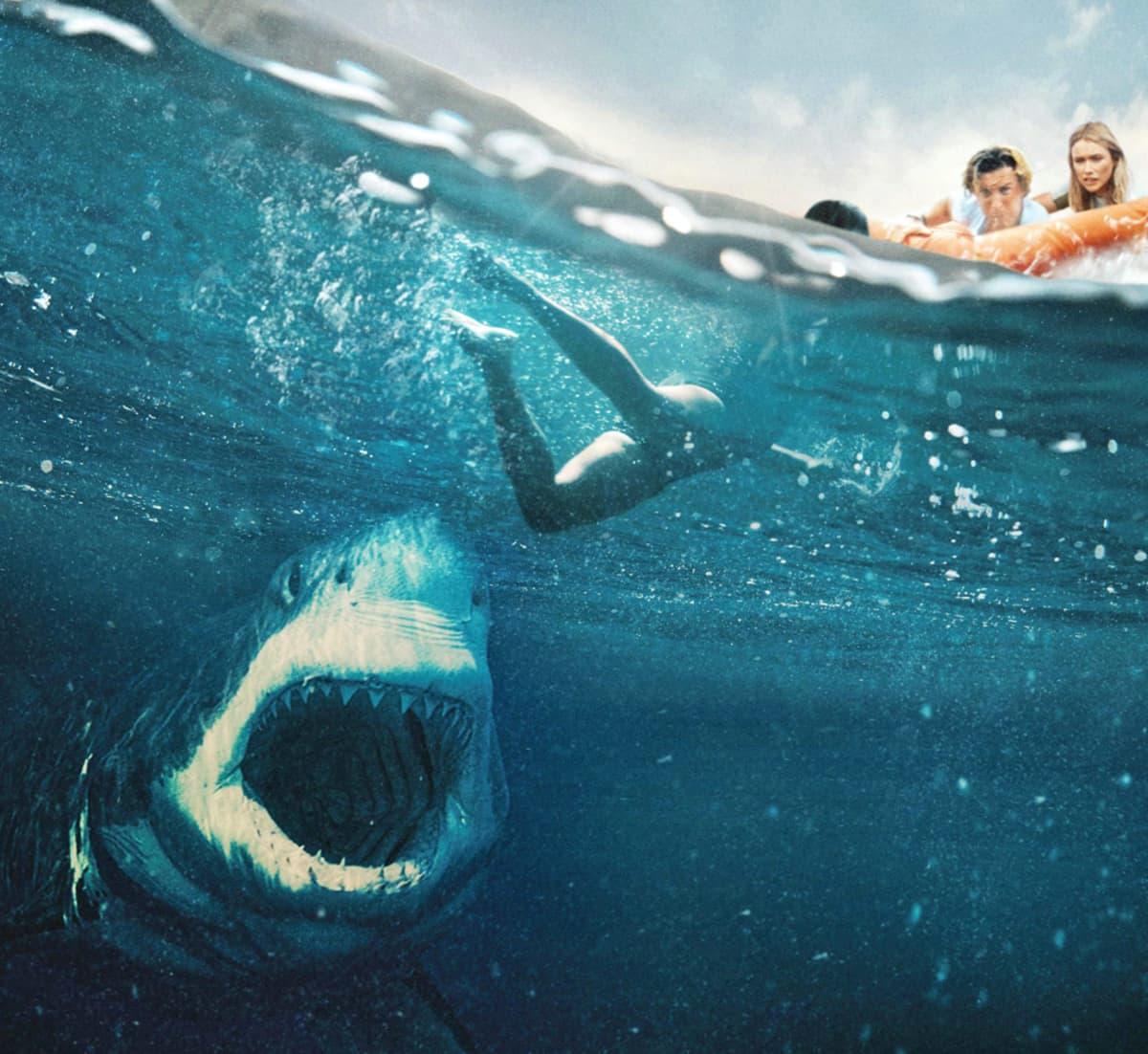Kaksi ihmistä vetää kolmatta vedestä veneeseen. Häntä kohti ui valkohai kita ammollaan.