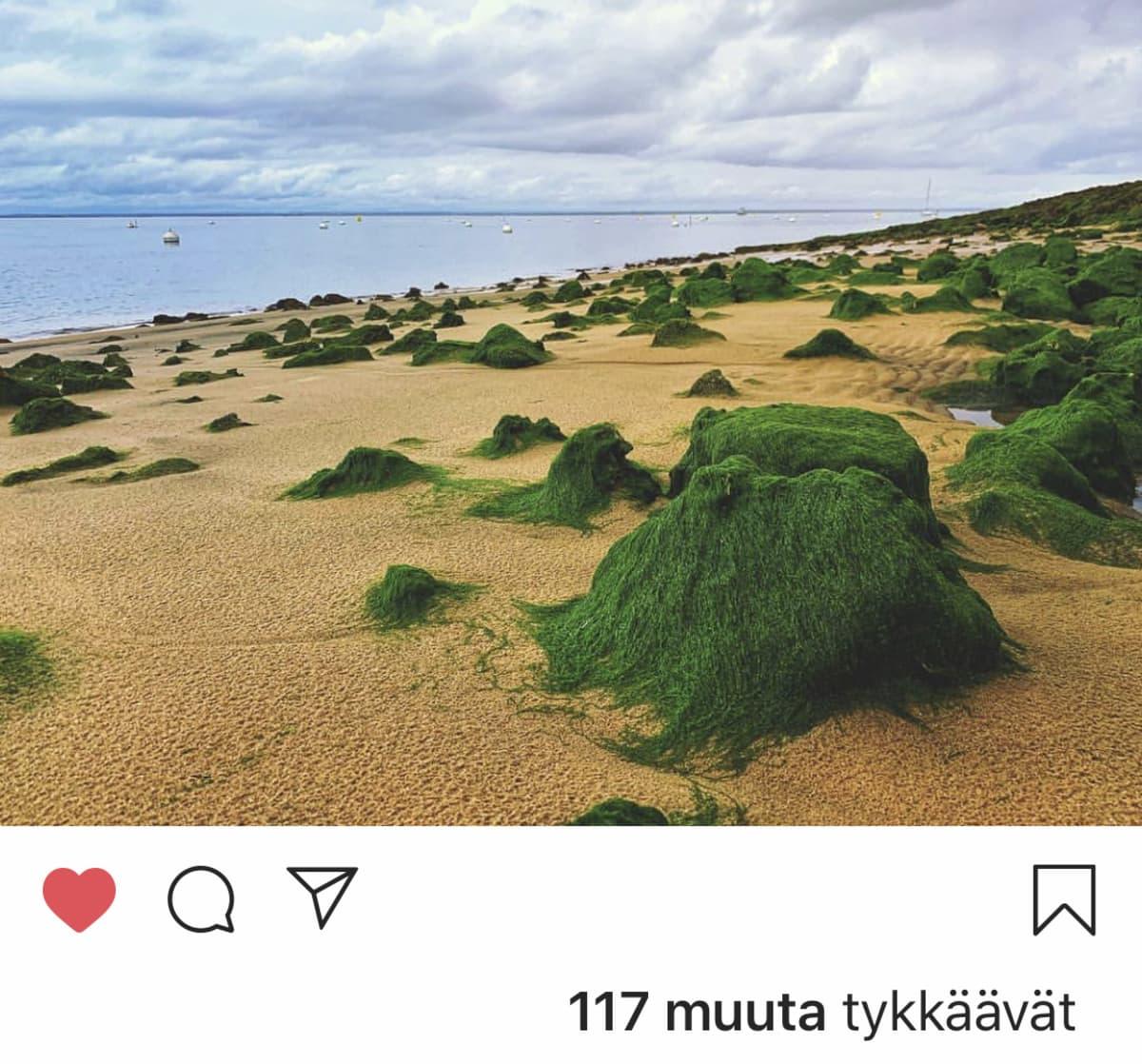 Instagramista kuvakaappaus