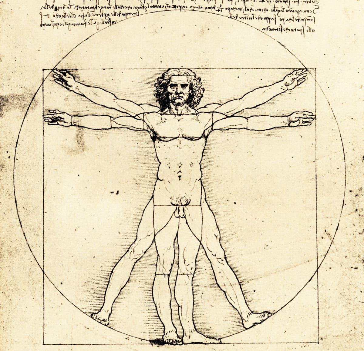 Leonardon piirros Vitruviuksen mies.