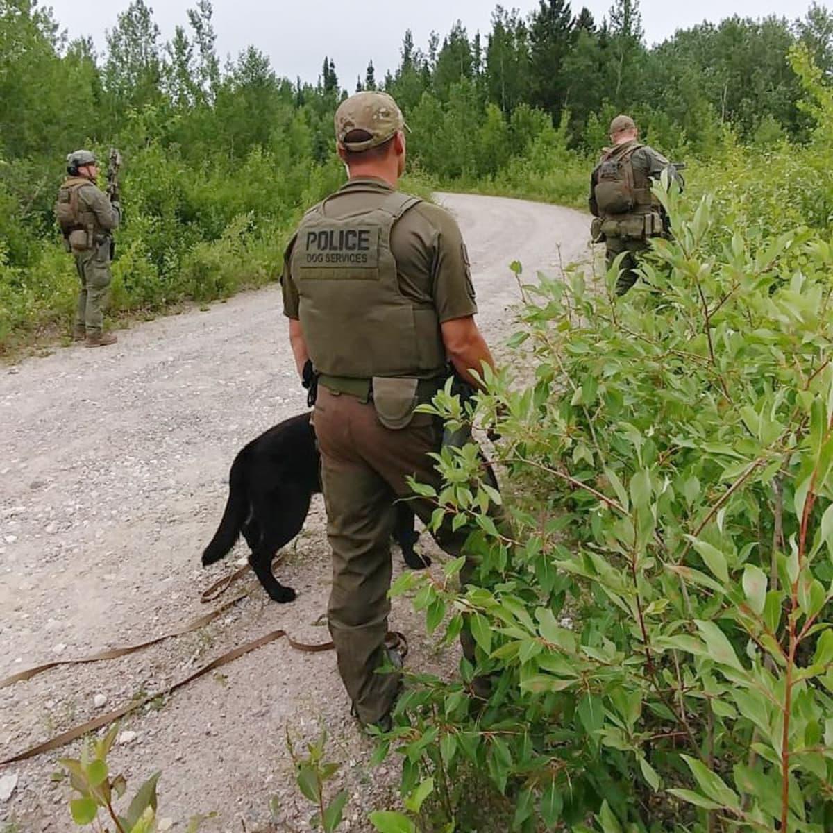 Poliisit ja koira luonnossa.