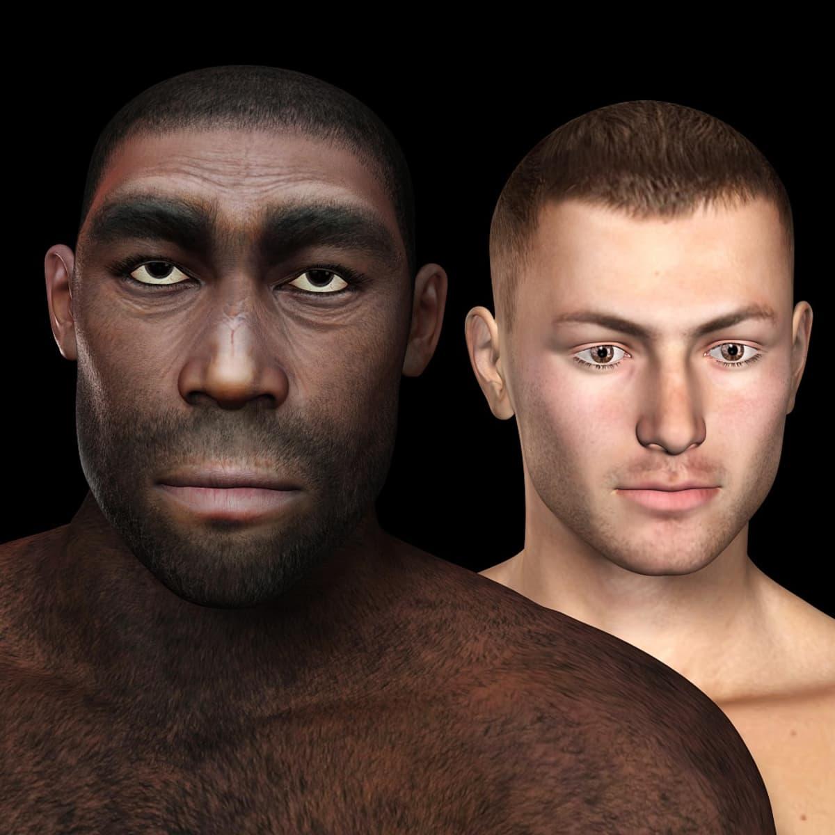 Piirroskuva kahdesta miehestä, kahdesta ihmislajista.