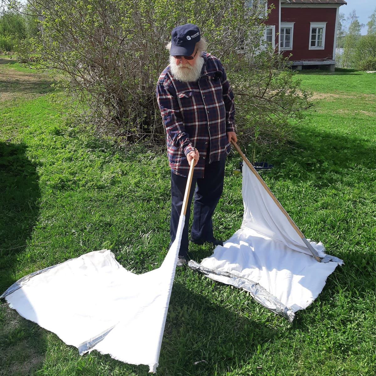 Heikki Henttonen kerää puutiaisia nurmikolta puurimoihin kiinnitettyjen kankaiden avulla.