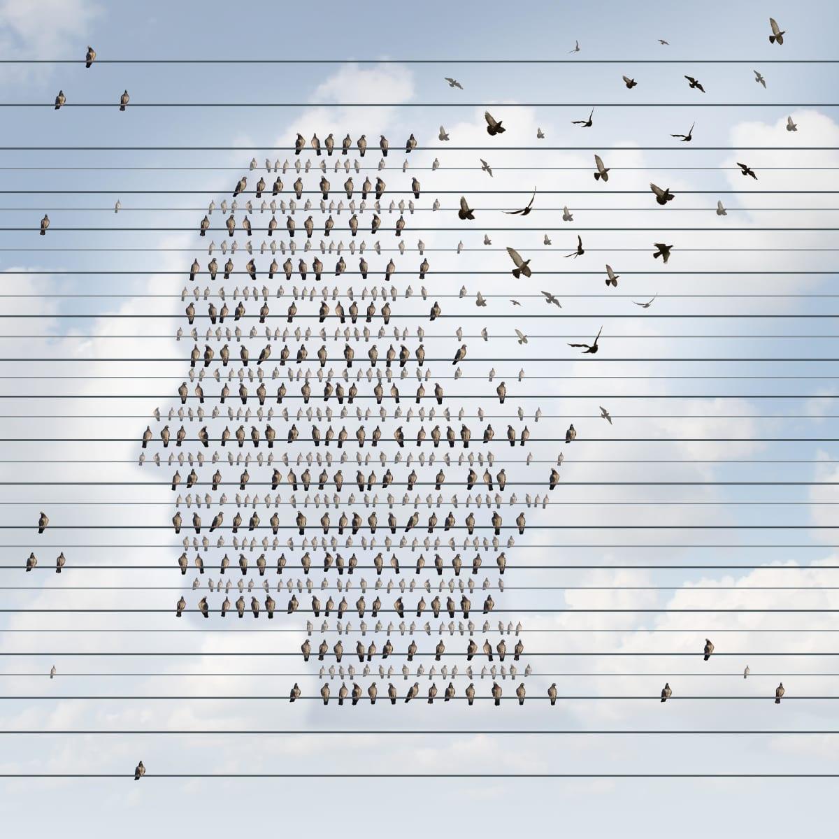 Människohuvud och fåglar