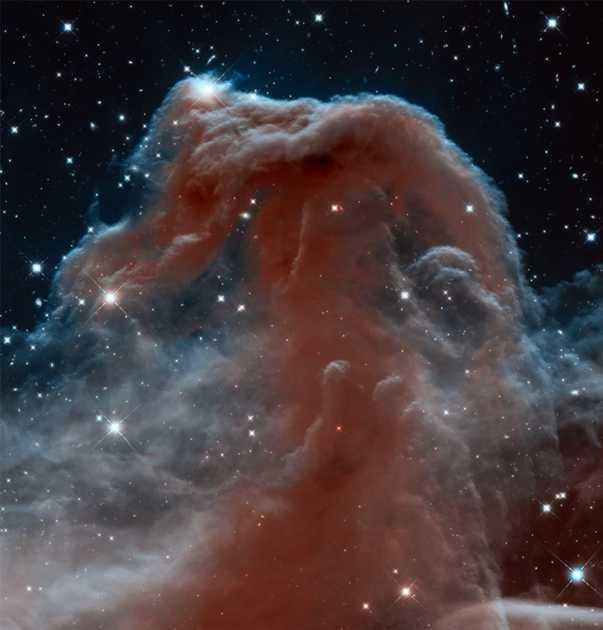 Hevosenpääsumu infrapuna Barnard33.