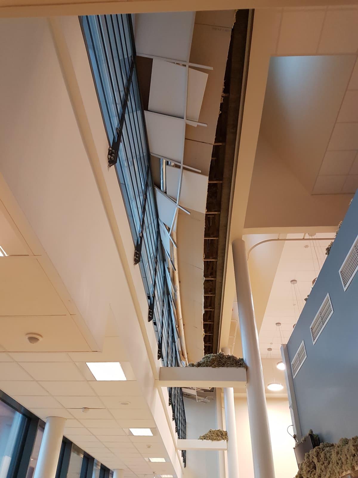 Tältä näyttää Harjurinteen koulun uudisosan ruokalan katto romahduksen jälkeen.