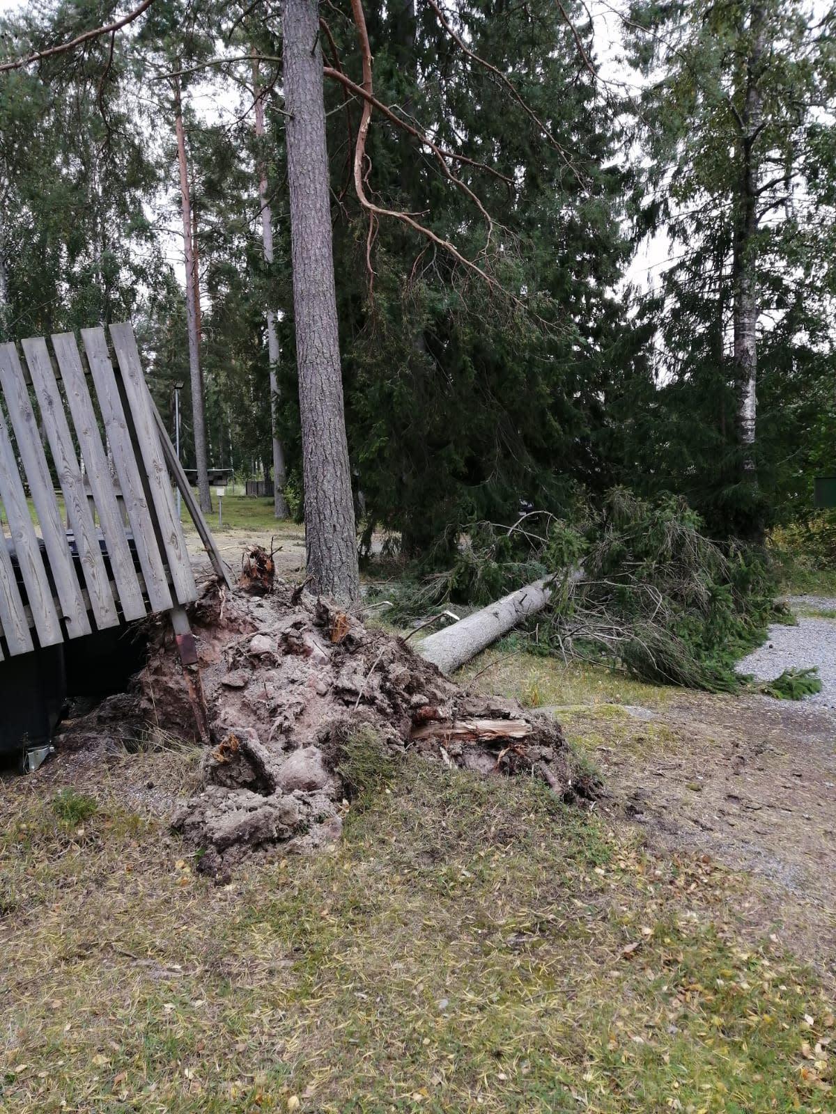 Reposaaren pallokentän tuhoja Aila-myrskyssä