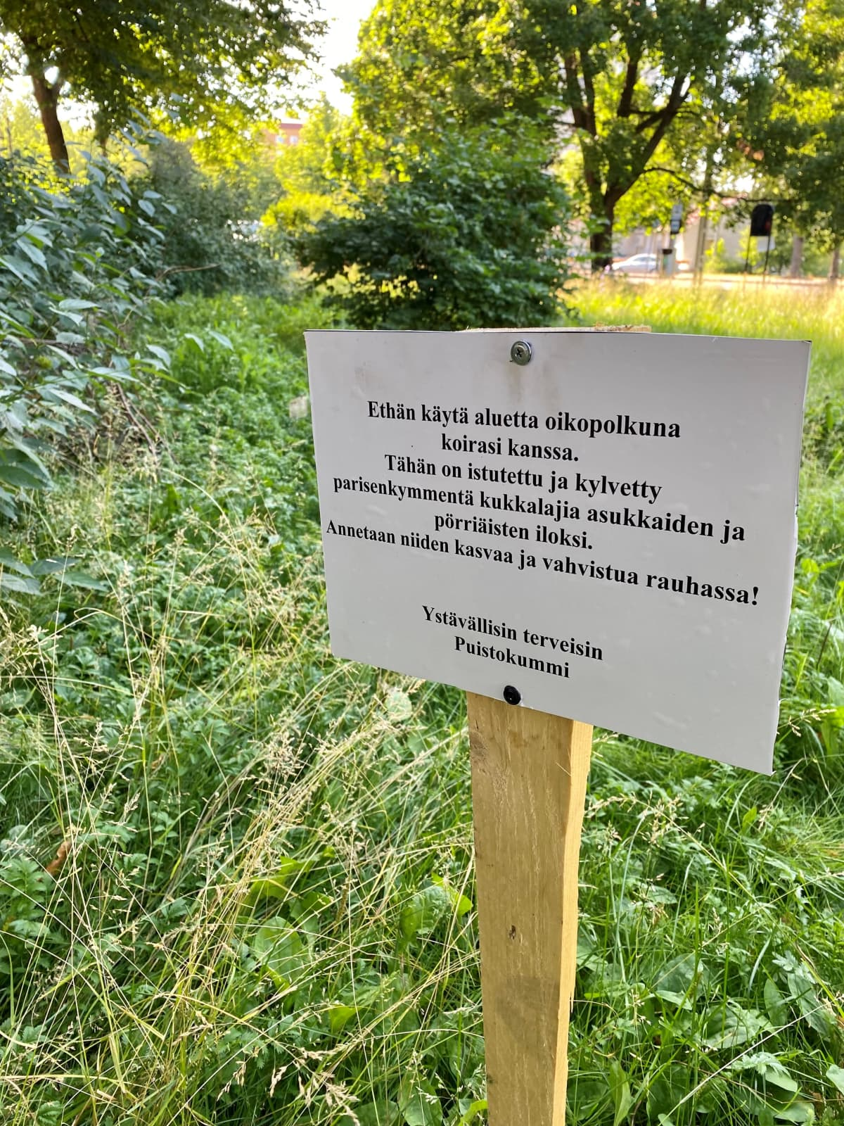 Kyltti, jossa kerrotaan, että puistossa kasvatetaan niitttykukkia.