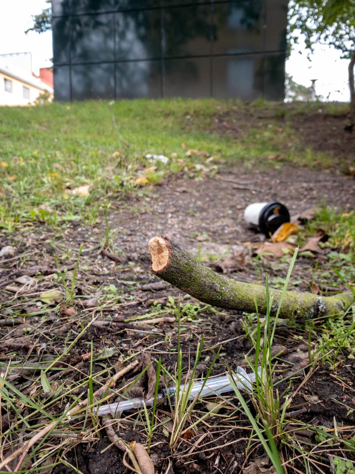Kallion Pengerpuistossa on sikin sokin neuloja, ruiskuja, klikkikuppeja ja lääkelevyjä.
