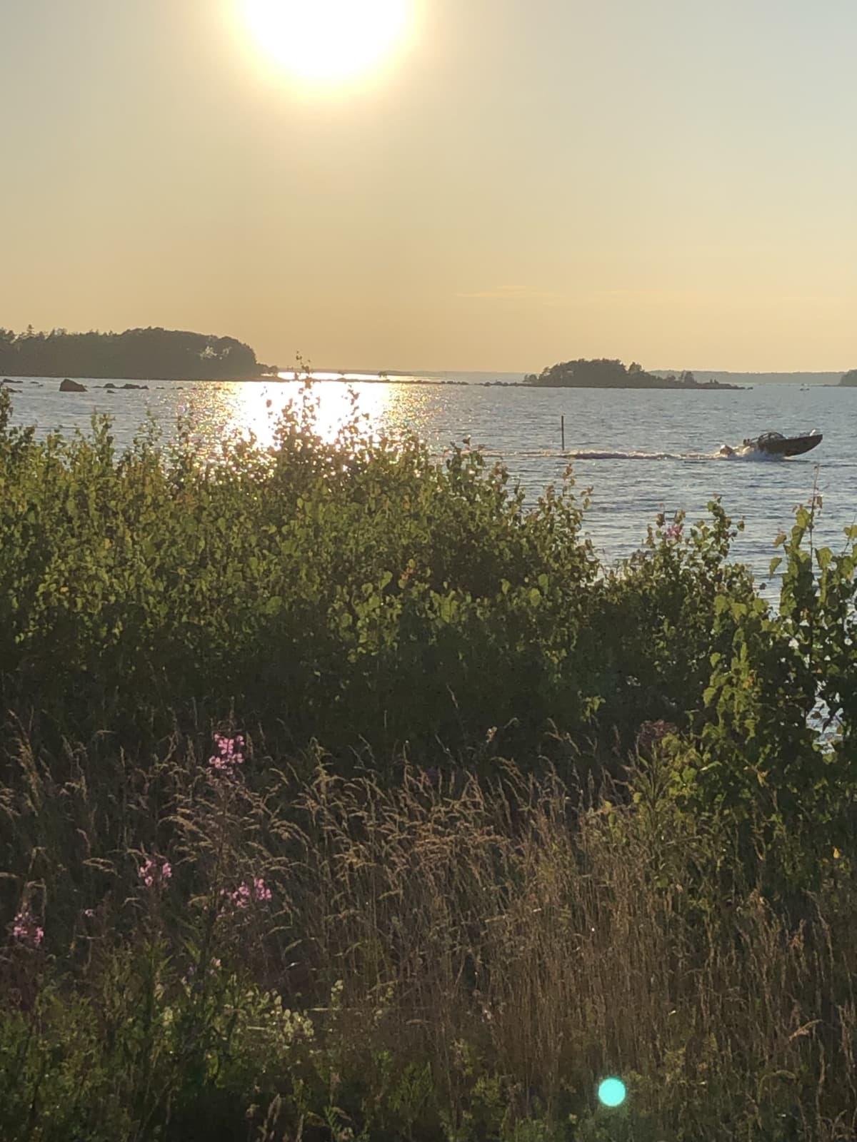 Ilta-aurinko merellä