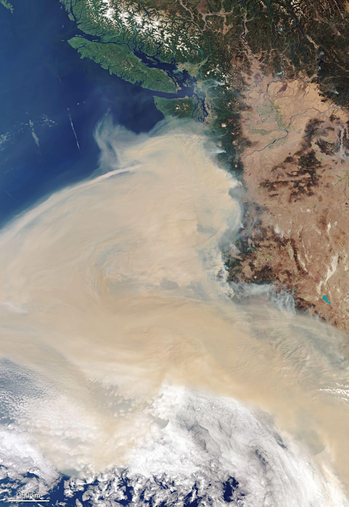 Euroopan avaruusjärjestön ESA:n viime torstaina ottama satelliittikuva Yhdysvaltain länsirannikolla olevasta savukerrostumasta. Tuolloin kuvan yläreunassa näkyvä Seattle sekä Kanadan Vancouverin alue olivat vielä selkeän ilman aluetta. Nyt riskiryhmiä kehotetaan pysymään Vancouverissakin sisätiloissa savun takia.