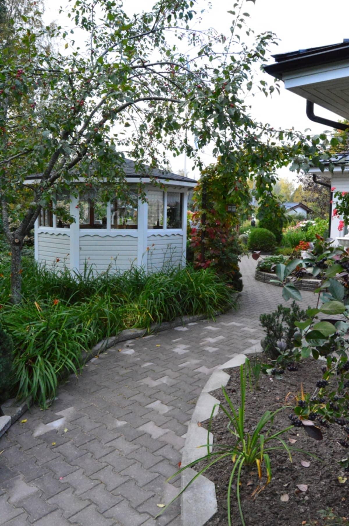 Talon puutarhaa