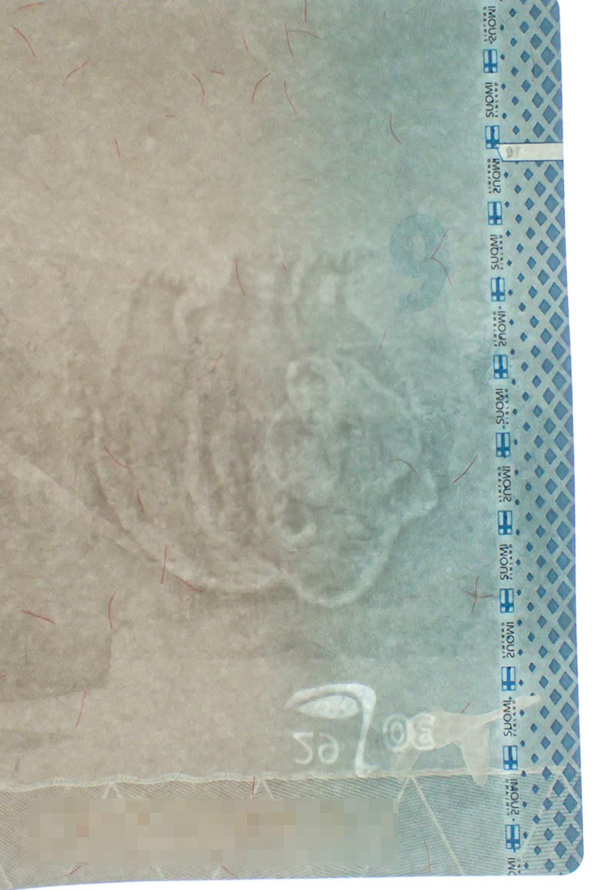 Väärin päin oleva vesileima passi uusi passi